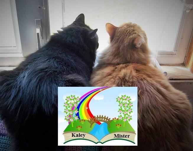 Kaley & Mister